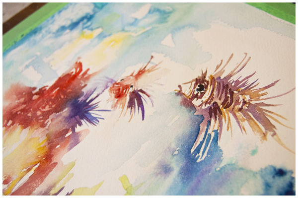 Lionfish study in watercolour  Angela Fehr.com