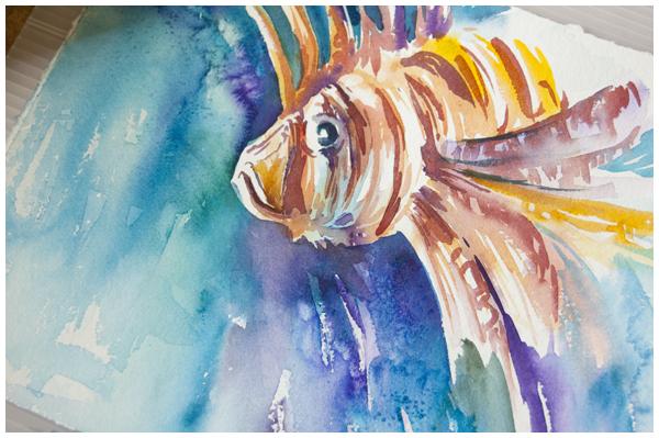 lionfish study | Angela Fehr watercolour paintings on https://angelafehr.com