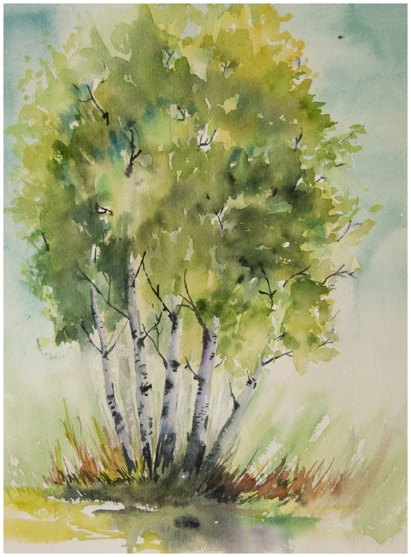 stand of birches study small