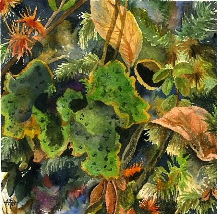 green fungus moss | Angela Fehr