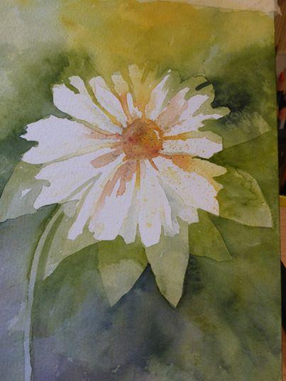 Daisy by Susan D.