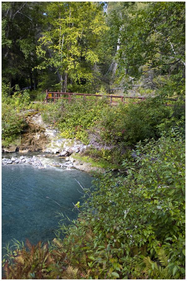 Liard hot springs | Angela Fehr https://angelafehr.com