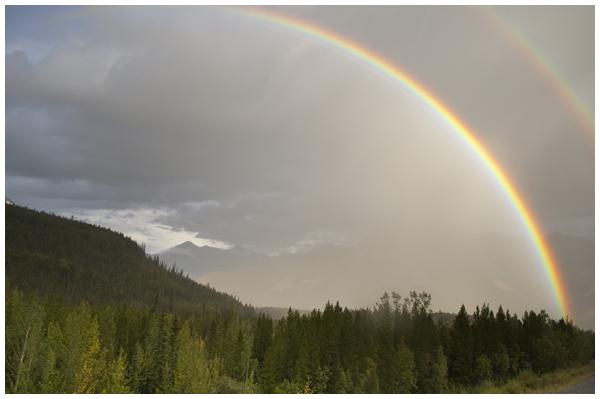 northern BC rainbows | Angela Fehr https://angelafehr.com