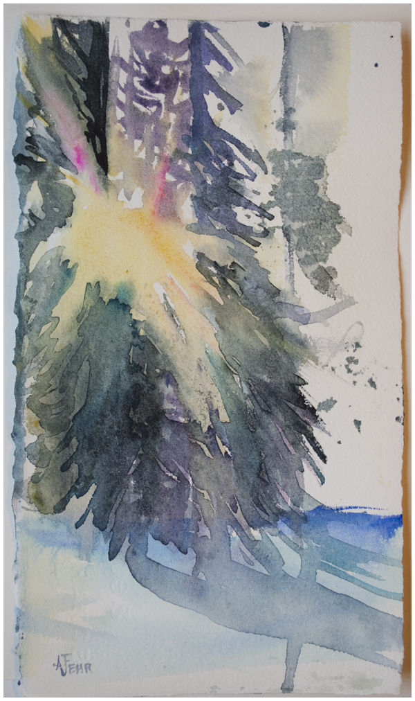 Sun Study   Angela Fehr