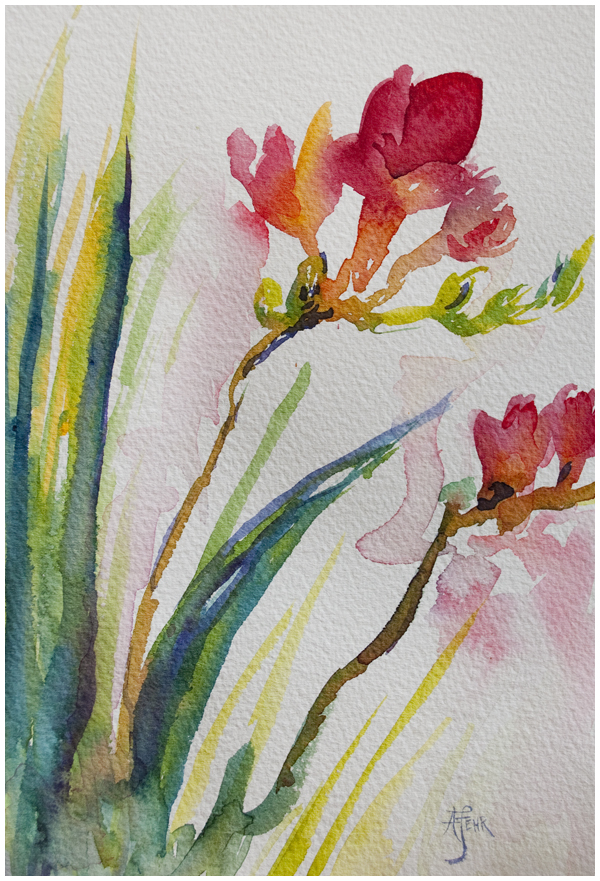 freesia sketch 5x7 watercolor by Angela Fehr