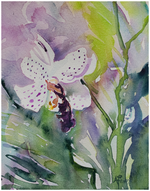 """Orchids 2"" watercolor by Angela Fehr"