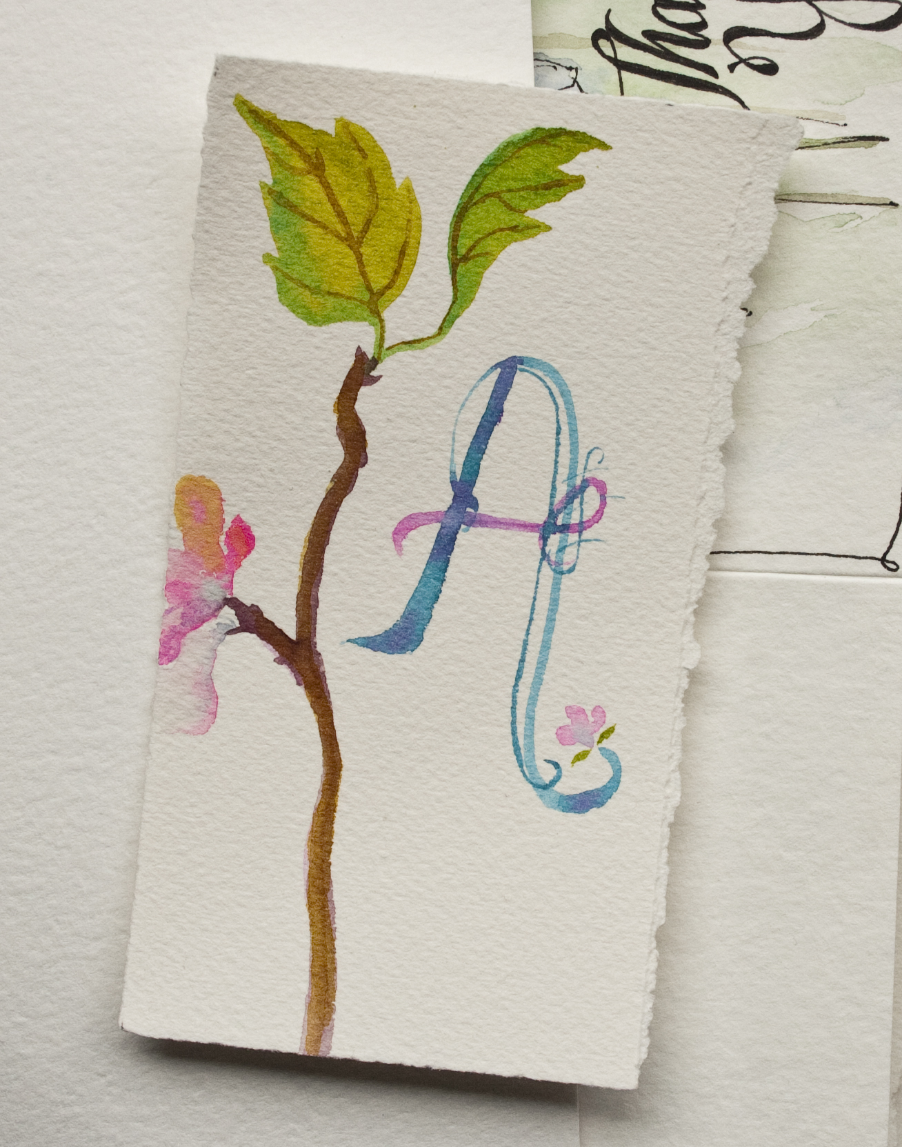 monogram - Angela Fehr watercolors