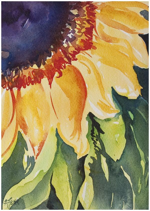 sunflower-1-600w.jpg