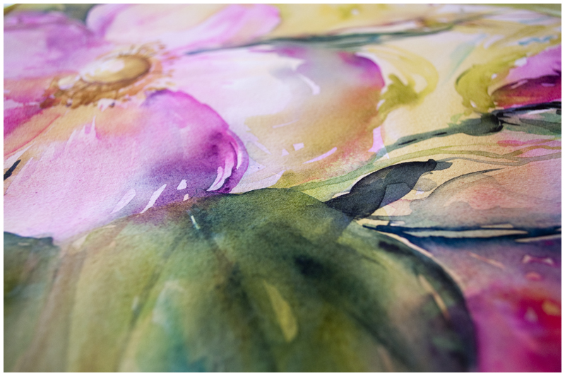Spray of Wild Roses, watercolor by Angela Fehr https://angelafehr.com