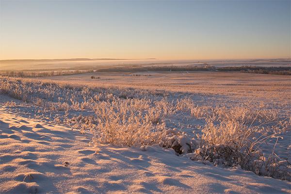 frosty walk2