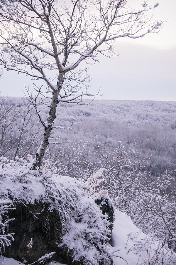 frosty walk5