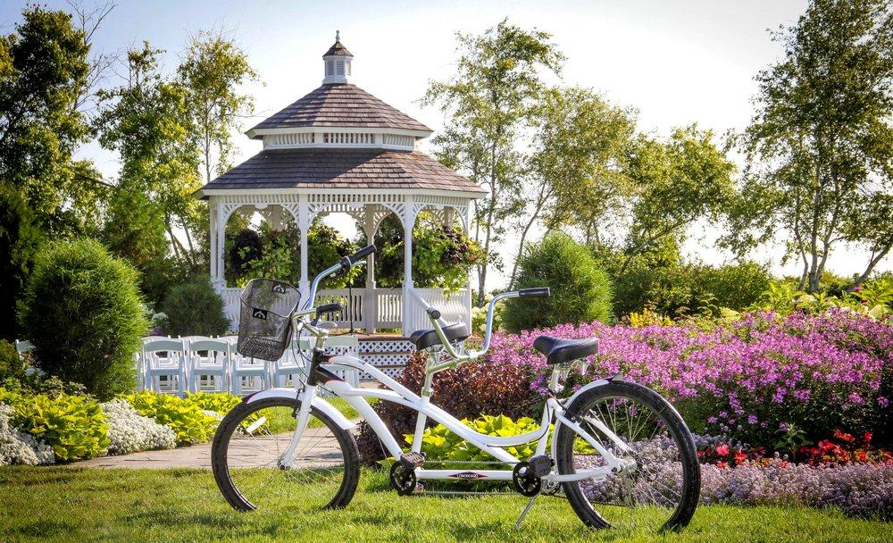 MPR+summer+Bicycle.jpg