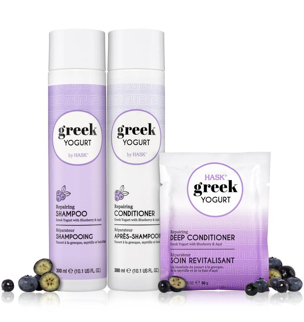Greek_Yogurt_SS_Blueberry_Acai_lineup_v2_low.jpg