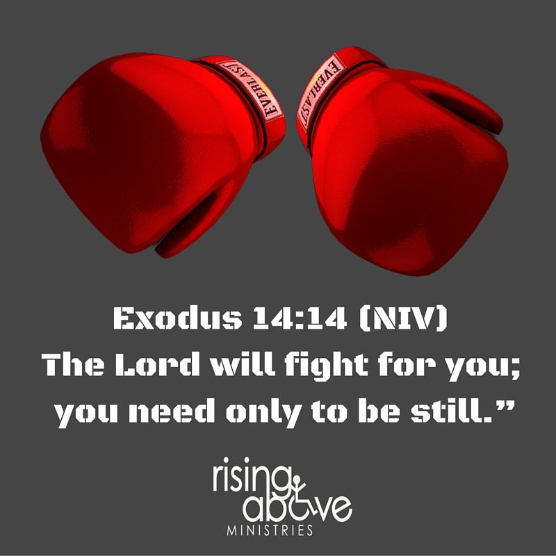 Exodus 14-14 (NIV)