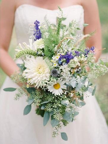 mountain wildflowers.jpg
