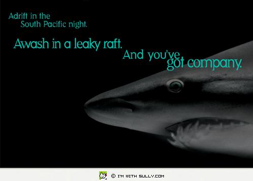 ill_shark.jpg
