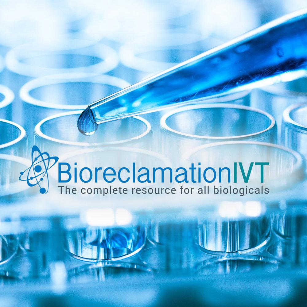 Bioreclamation IVT - Website Design