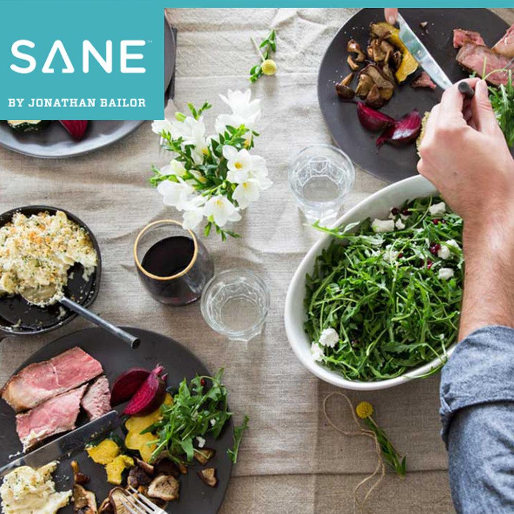 Sane Solution - Website Design, App Dashboard Design