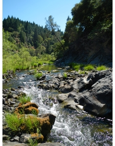 Lower Outlet Creek – 5/12/12