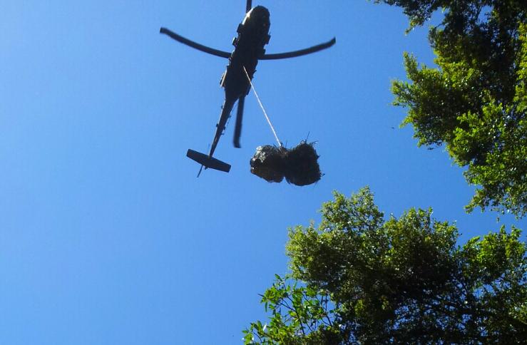 Loaded_Chopper_Crop.jpg