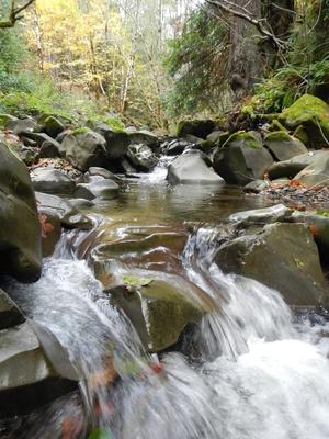 water_flowing_300x400.jpg