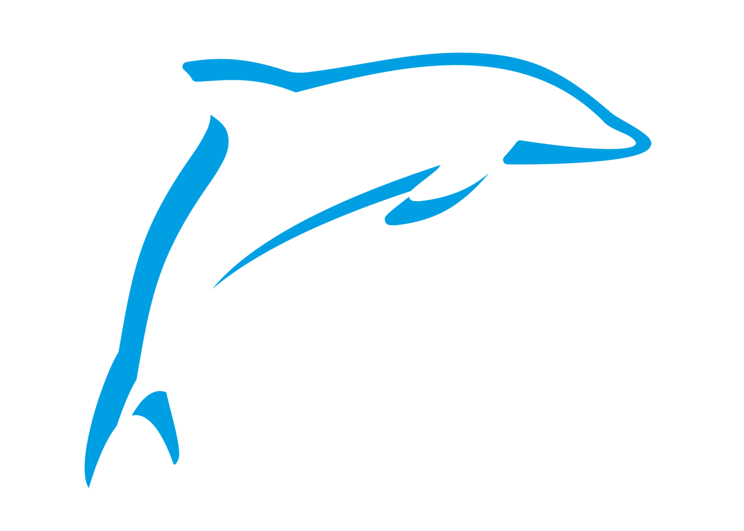The Dolphin Laundry