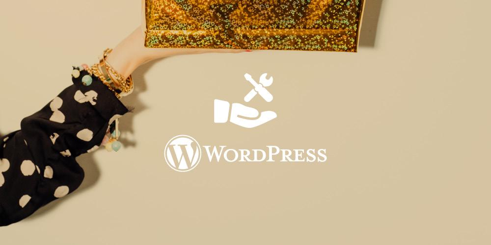 WordPress care plan -