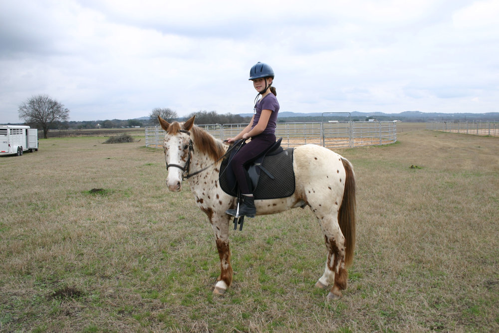 Who let me wear two tones of purple with a blue helmet on a chestnut leopard appy???