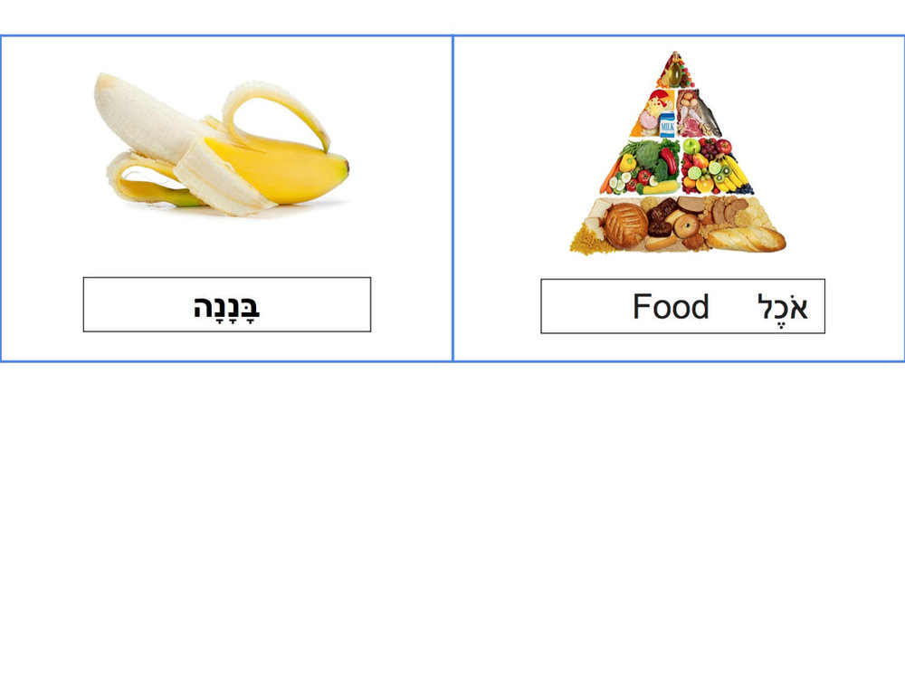 food-unit-vocab-cards-4_orig.jpg