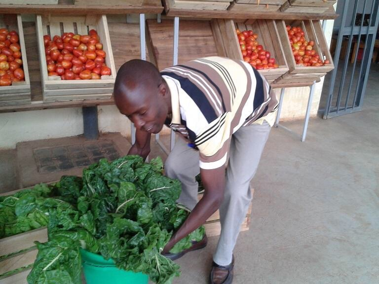 Our farmer's market is now rolling at #Mbale. Today featured produce from young people in honor of #IYD2015