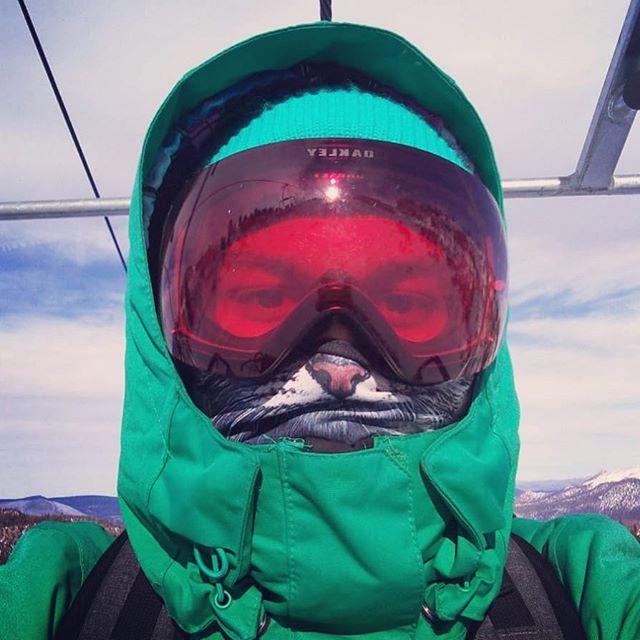Meow. 🏂 #jakeoshëi #angrycat #mammothmountain #snowboarding #musicianswhoshred #lift #skislope #snowboardingseason