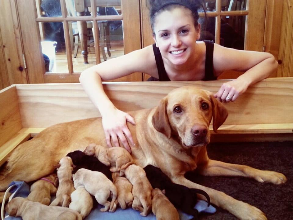 Whitney Dogs1.jpg