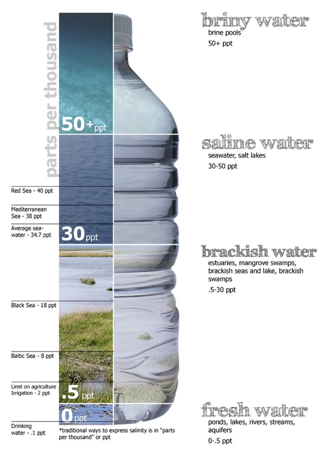 Wikepdia Salinity Diagram