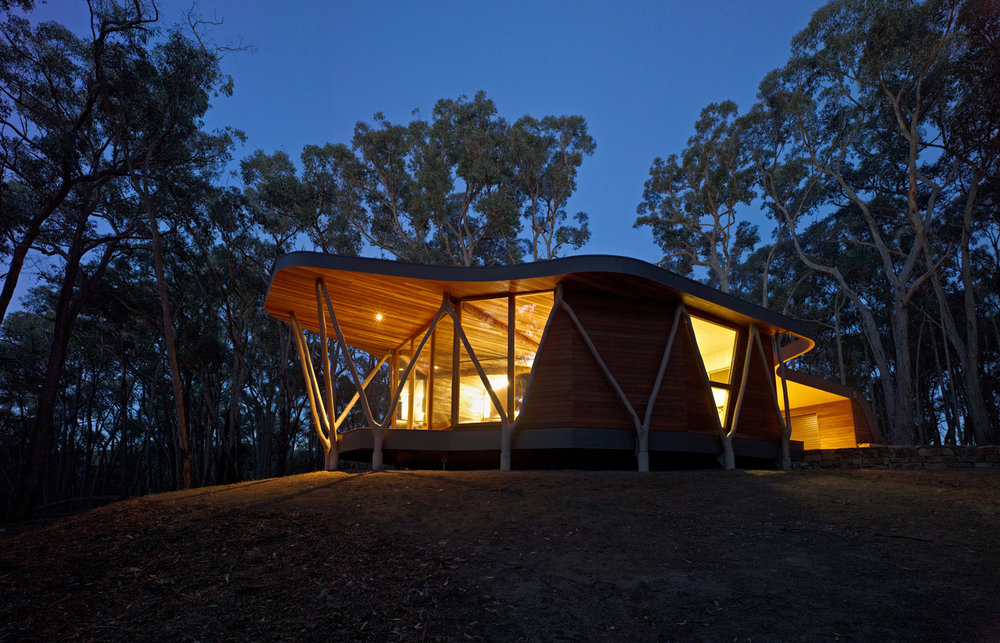 Paul Morgan Architects The Trunk House forest retreat Victoria's Central Highlands exterior night