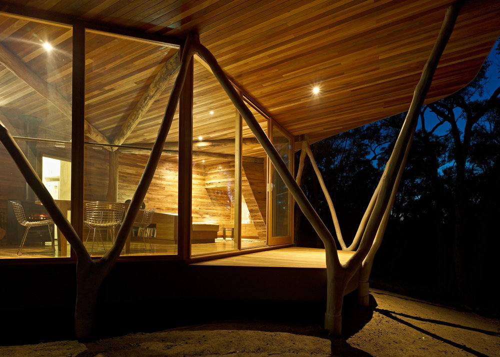 Paul Morgan Architects The Trunk House forest retreat Victoria's Central Highlands interior