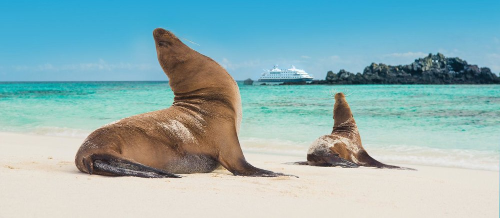 Explore the Galapagos islands