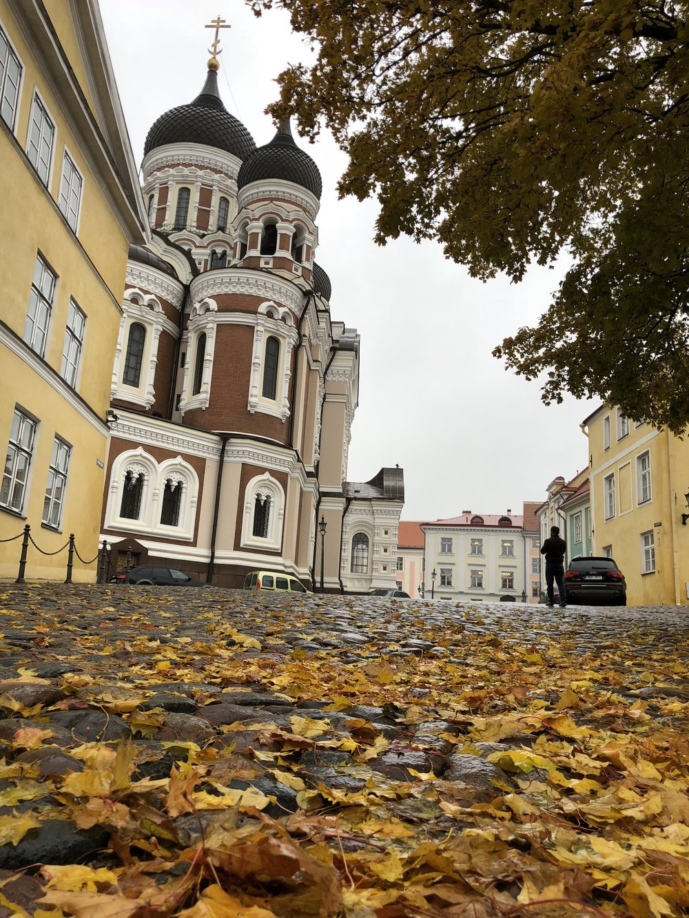Estonia (3).jpg