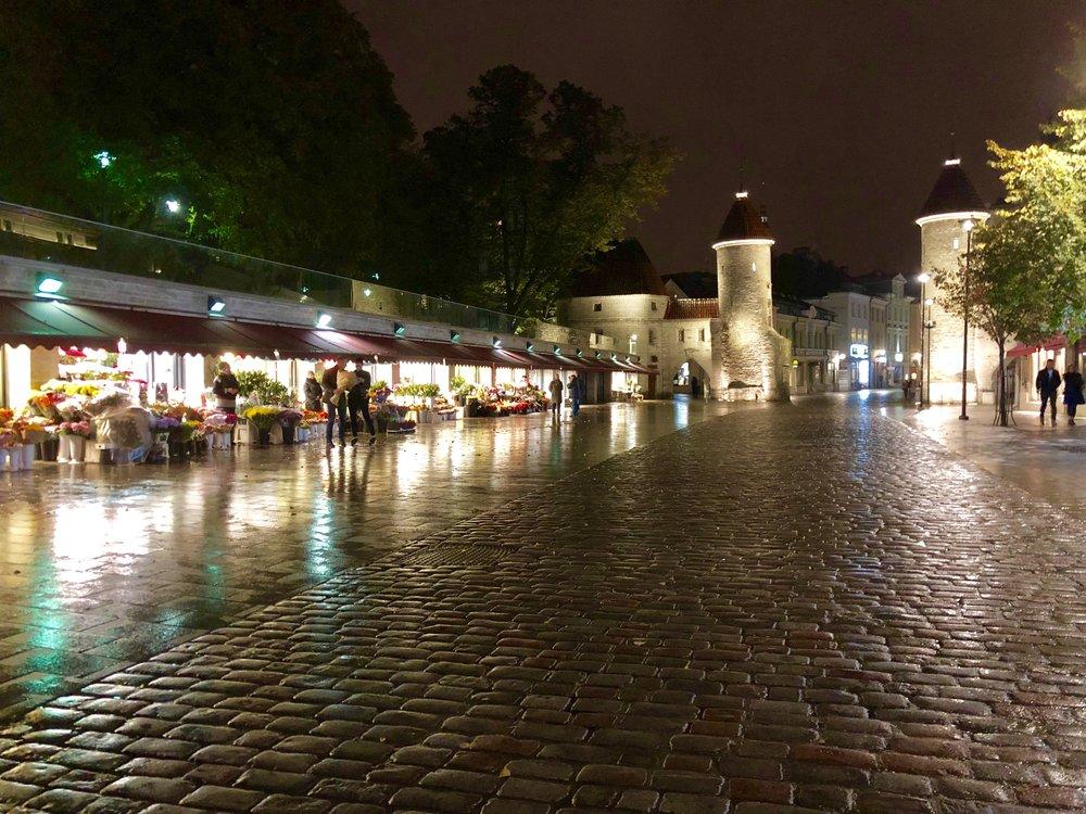 Estonia (4).jpg