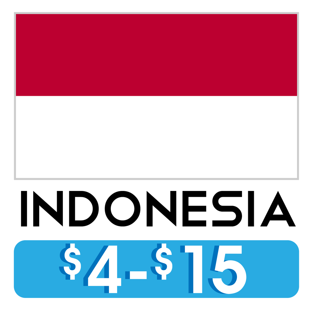 Costos_Hostales_Indonesia.png