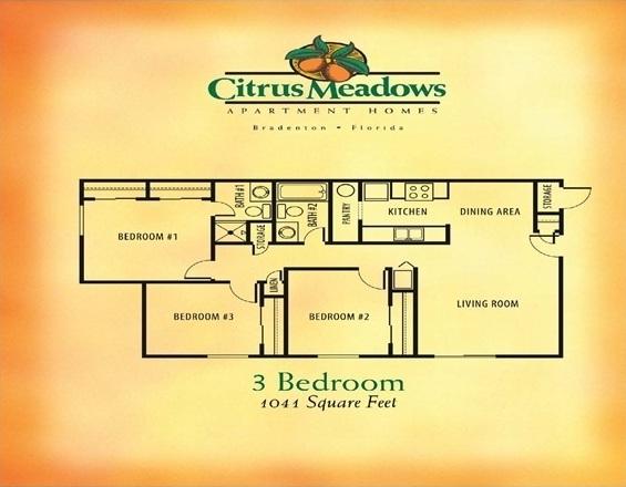 3 Bedroom / 2 Bathroom -