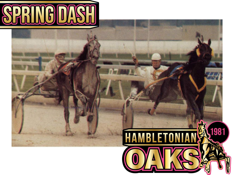 Spring Dash - 8 — Hambletonian Society