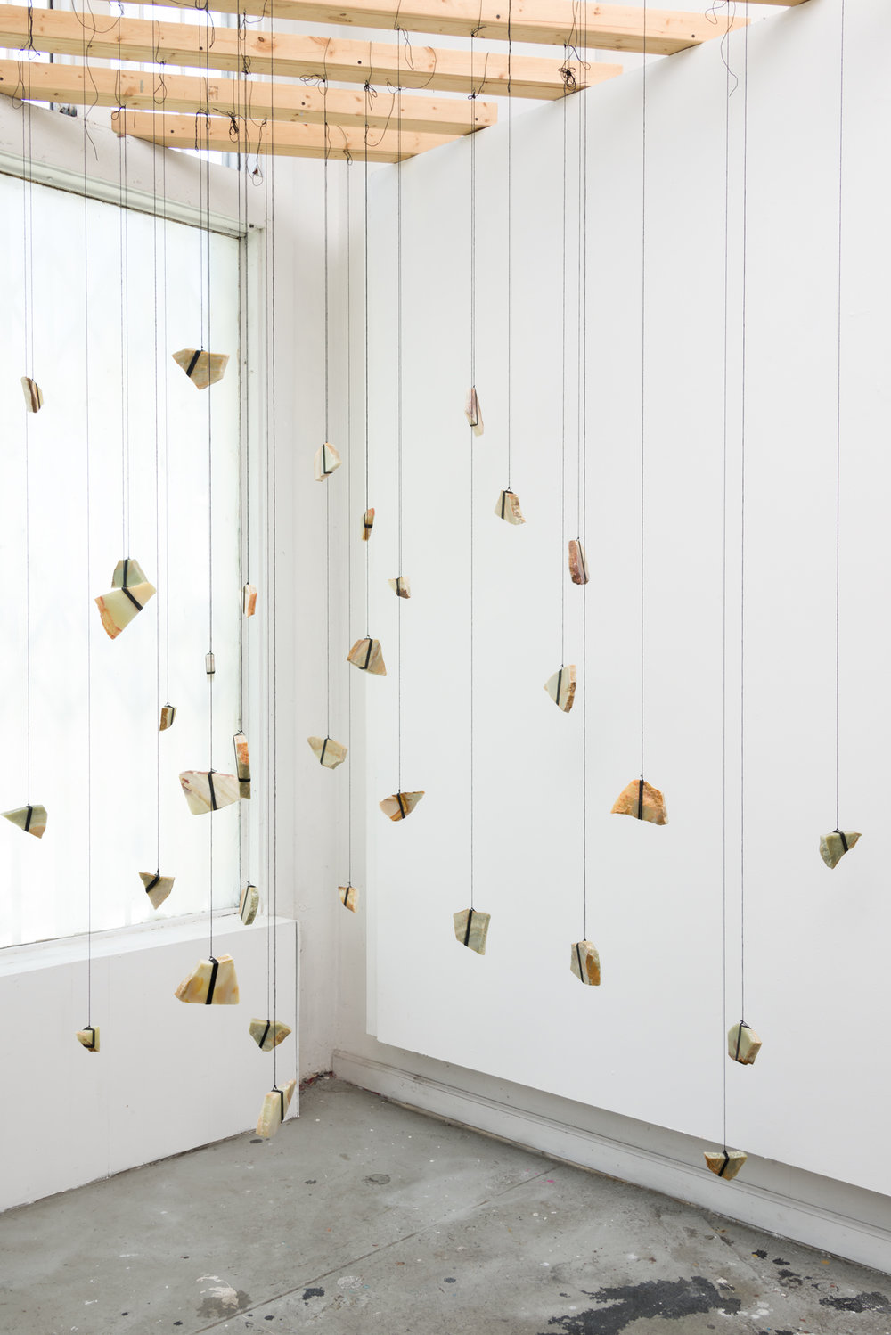 Butterfly Double (Installation View), 2016