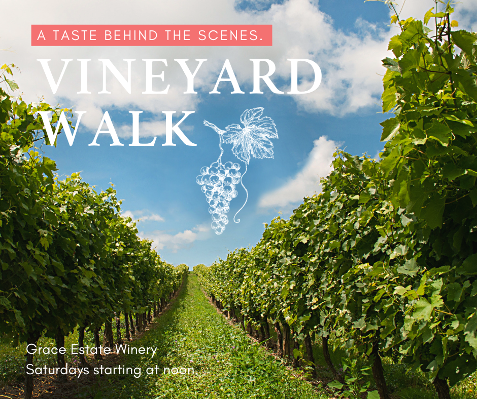 Vineyard Walk - SaturdaysTake a tour of one of the original vineyards of Charlottesville's Monticello Wine Trail. Our staff will lead you on a tour that begins at our beautiful tasting room, winds up through the vineyards and production barn, and ends at the mansion overlooking Crozet, VA. You'll get to enjoy a tasting of five of our wines along the way. Thirteen grape varietals are grown on our 50-acre vineyard. Come experience Grace!$35 per person | Limited to 12 peopleTours available at: 12 PM, 2 PM & 4 PM