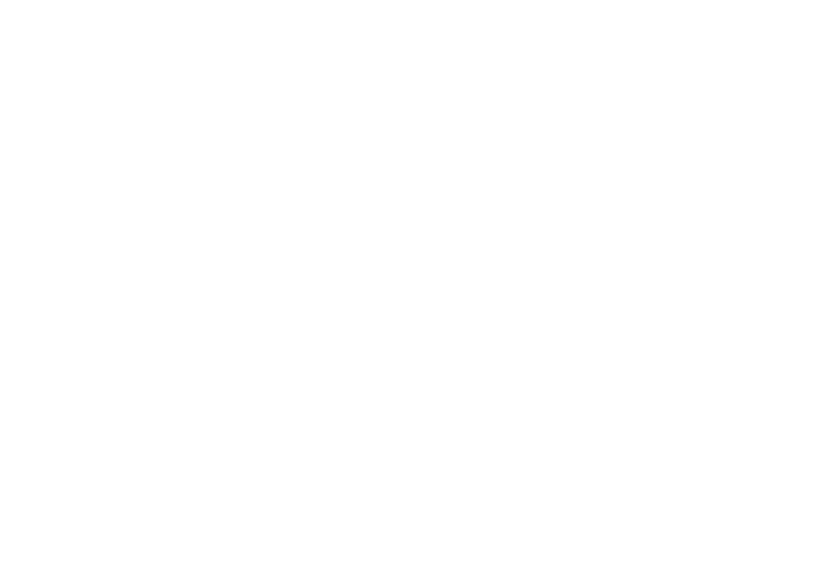 acehardware.png