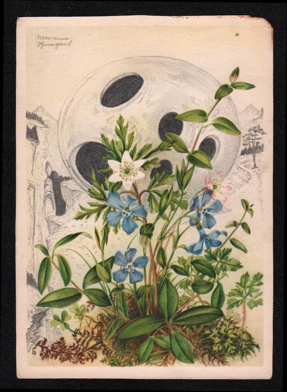 New Dawn I,  Graphite on found antique postcard, 2018