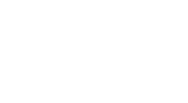 Armor Shields | Big Green Egg Accessories