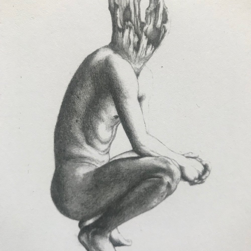 Malory Donahue - Flagstaff | Charcoal Artist
