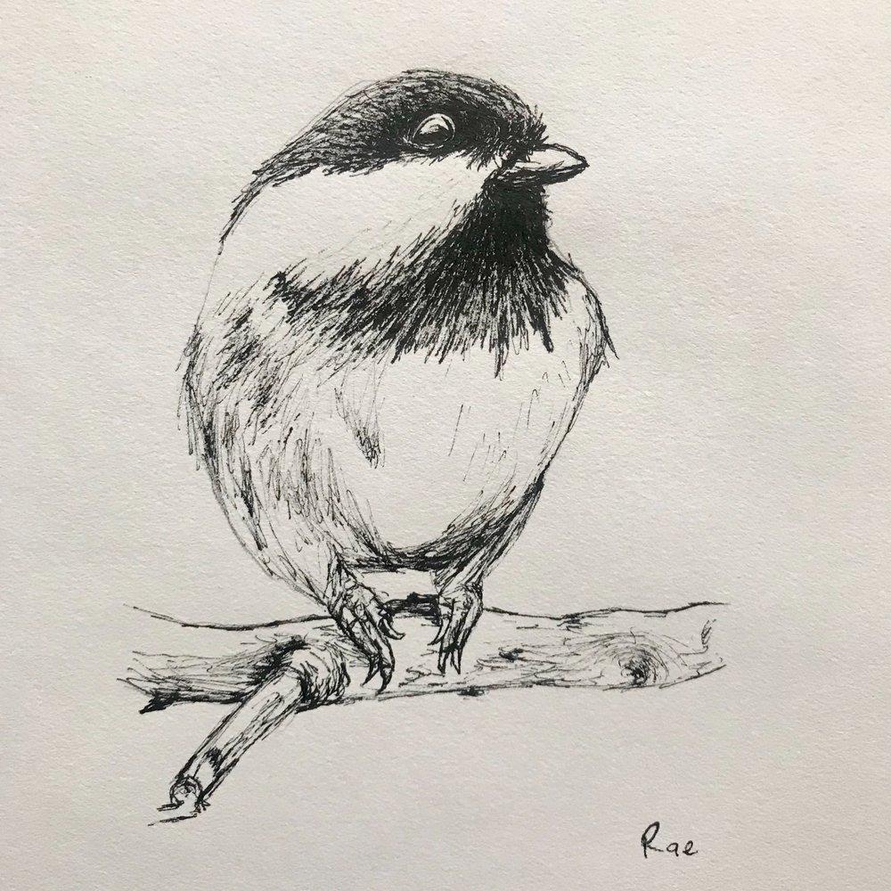 Raemy Winton - Flagstaff | Pen and Ink Artist
