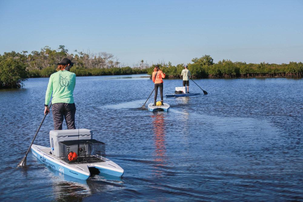 Backwater Fish & Paddle 2