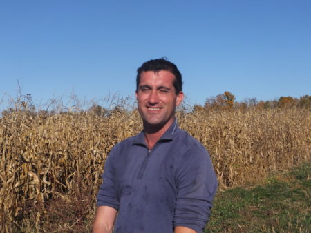 Cover Cropping at Stone House Farm   (The Natural Farmer - The Newspaper of the Northeast Organic Farming Association)